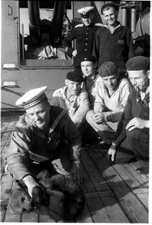 Моряки гвардейского крейсера «Красный Кавказ» с корабельным питомцем