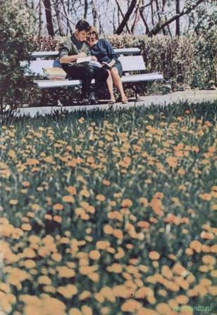 Парень с девушкой на скамейке.